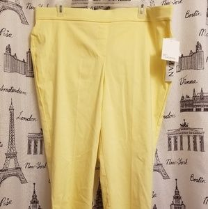 NWT 89th +Madison Canary Pants Size 2Xl